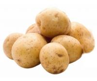 """Картофель """"Санте"""""""