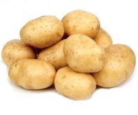 """Картофель """"Удача"""""""